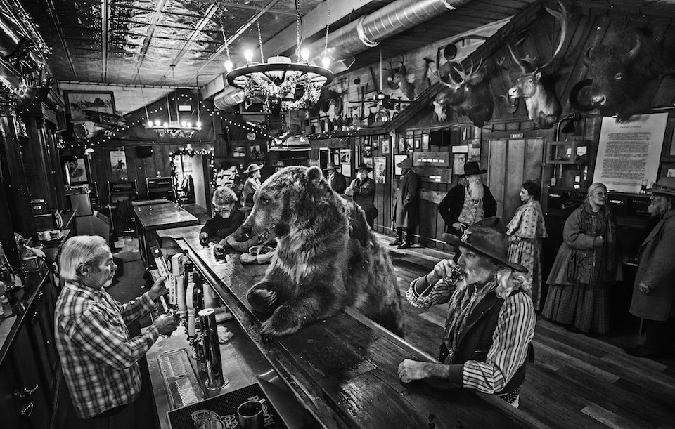"Photo Caption Competition: ""A bear walks into a bar…"""